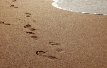 Keeping Your Family Footprint Alive