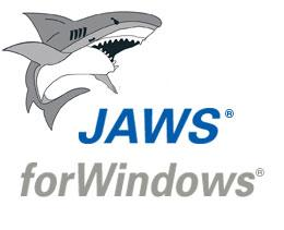 J.A.W.S. Screenreader software